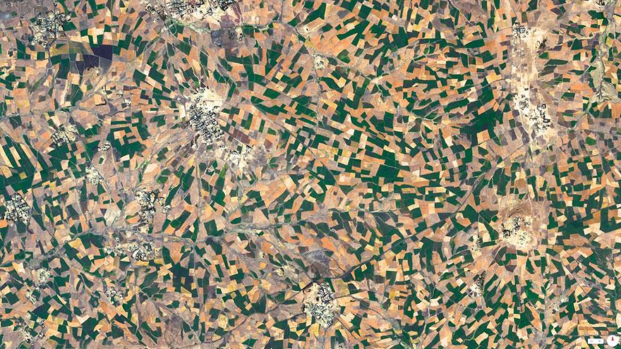 Agricultural-Development-Addis-Ababa-Ethiopia