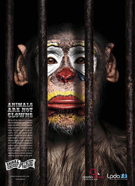 circus-clown-PSA-01