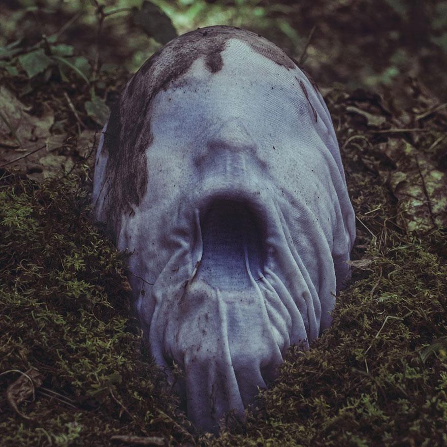 Horror-Pics-7