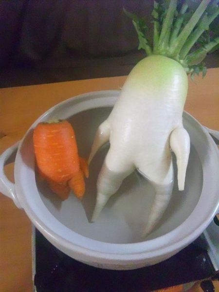 vegetables_that_are_desperately_trying_to_be_something_else_640_11