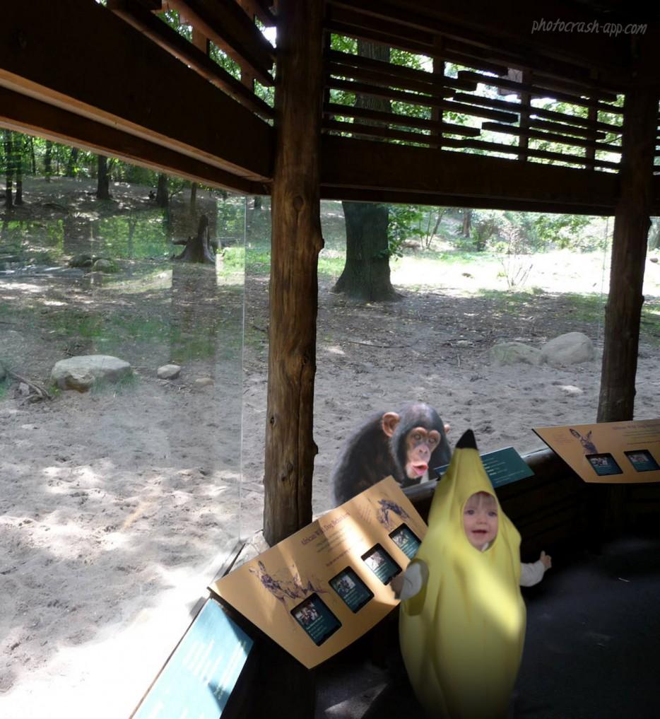 zoo-005
