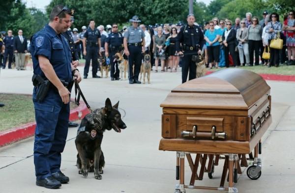 dog-casket-4-600x394